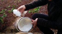 Dự báo thời tiết mới nhất: Mưa đá, dông lốc sẽ xuất hiện dồn dập ở Tây Bắc Bộ