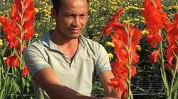 Làm giàu ở nông thôn: Trồng 1ha hoa lay ơn, cúc, lãi 600 triệu/năm