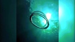 Vòng tròn bí ẩn xuất hiện dưới biển Úc