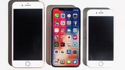 Xếp hạng những chiếc iPhone bạn có thể mua luôn và ngay