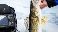 """""""Quái vật phương Đông"""" tràn về, nhiều người thích thú câu cá trên băng"""