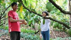 """Lão nông mơ tự sản xuất thương hiệu """"Chocolate made in Việt Nam"""""""