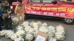 """Hà Nội: CSGT """"giải cứu"""" củ cải cho bà con nông dân"""