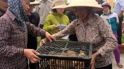 Chia sẻ con giống, hỗ trợ nông dân thích ứng với biến đổi khí hậu