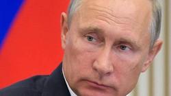 """Nga dùng robot ám sát """"không thể phát hiện"""" ở Anh?"""