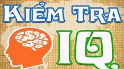 Bài test IQ giúp bạn kiểm tra mức độ thông minh của mình