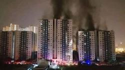 Vụ cháy chung cư Carina Plaza: Làm rõ trách nhiệm của cơ quan quản lý về PCCC
