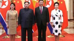 Vì sao ông Tập Cận Bình đồng ý gặp ông Kim Jong-un?