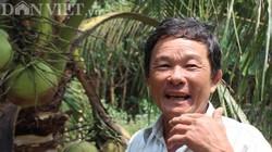 Trên liếp trồng dừa, nuôi heo rừng, dưới mương thả cá, lời 300 triệu/năm