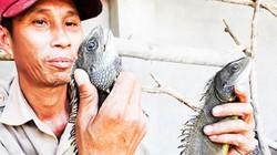 """Nuôi loài """"khủng long mi ni"""" thích ăn bầu bí, bán 300.000 đồng/ký"""
