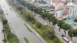 Hà Nội bắt đầu chặt, di chuyển gần 500 cây xanh mở rộng đường Láng