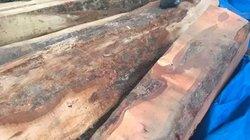 Phát hiện bãi tập kết gần 18m3 gỗ trái phép