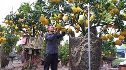 """Cực """"độc"""", lạ: Lấy vương miện hoa hậu làm cây chưng Tết ở Hưng Yên"""