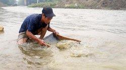 Lào Cai: Theo dân ra suối làng Chiềng đãi cát tìm vàng cám