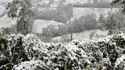 Hôm nay, rét đậm rét hại, miền núi có thể xuất hiện băng giá, mưa tuyết
