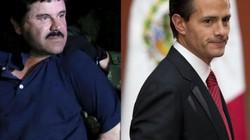 Hé lộ số tiền khổng lồ trùm ma túy El Chapo hối lộ người đứng đầu một quốc gia
