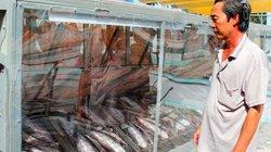 Về Long An ngó vào buồng phơi cá dứa đặc sản bán Tết mà thèm