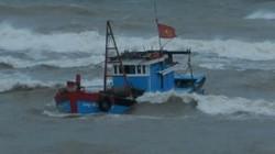 Sóng lớn đánh vỡ tàu, 10 ngư dân bị hất rơi xuống biển