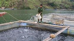 Sức bật giảm nghèo ở một xã khó khăn huyện Mường La