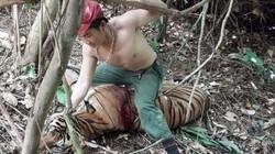 Băng nhóm chuyên săn hổ khắp Đông Nam Á bán về Việt Nam