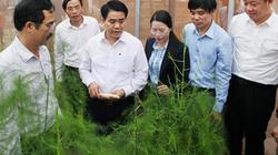 Khuyến nông Hà Nội: Giúp nhà nông đổi đời, xây dựng nông thôn mới