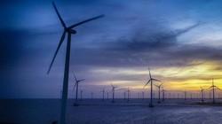 Bình minh hư ảo, đẹp như phim trên cánh đồng điện gió lớn nhất nước