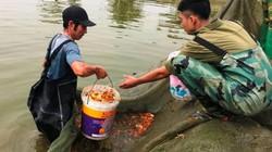 Tấp nập làng cá chép Tân Cổ dịp tiễn ông Táo về trời ở xứ Thanh