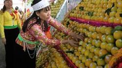 Cận Tết giá cam Cao Phong tăng đột biến, nhà vườn trúng đậm