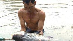 """TP.HCM: Cung ứng gần 100 tấn cá đặc sản, """"thượng đế"""" tha hồ ăn Tết"""