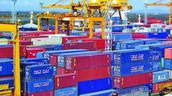 Hàng vạn container phế liệu chất đống, doanh nghiệp khóc với Thủ tướng