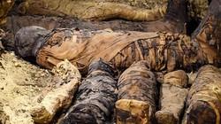 """Phát hiện """"đại gia đình"""" xác ướp trong hầm mộ 2.000 năm ở Ai Cập"""