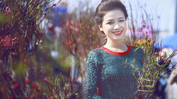 Sao Việt gửi lời chúc Tết Kỷ Hợi đến bạn đọc Dân Việt