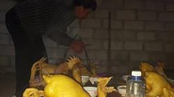 """Độc đáo """"Hội thi gà"""" cúng thổ công sáng mùng 1 Tết ở xứ Lạng"""