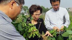 Ai sẽ đưa nông sản Việt vươn xa?