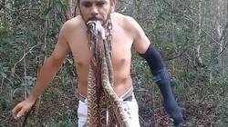 Người đàn ông liều mạng ngậm 6 con rắn độc trong miệng