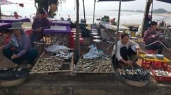 Về đền Cờn du xuân, ăn cá trích nướng thơm nức mũi