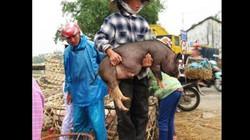 """Nghề nào ở Việt Nam đầy rẫy, ở Mỹ """"bói không ra""""?"""