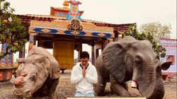 MC Phan Anh đau lòng khi nhiều quán đặc sản động vật hoang dã mọc lên cạnh chùa chiền