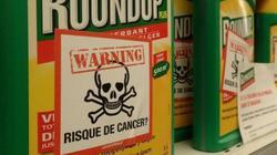 Mới: Bệnh nhân ung thư khai gì trong phiên tòa Monsanto?