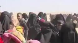 Vợ khủng bố IS cổ vũ chồng bên ngoài pháo đài cuối ở Syria