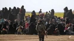 Đại chiến Syria: SDF ra tối hậu thư yêu cầu IS ở Baghouz đầu hàng