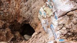 Bình Định: Dùng chó săn truy tìm người lạ đào hầm trái phép ban đêm