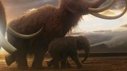 Bước đột phá giúp hồi sinh voi ma mút thời tiền sử trên Trái đất