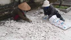 Chủ tịch Quảng Ninh: Nhắc nhở các địa phương chủ quan với dịch tả lợn châu Phi