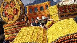 150 tấn chanh được sử dụng cho lễ hội kỳ lạ diễn ra suốt 86 năm