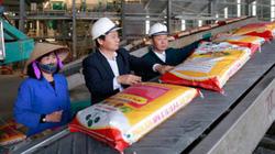 Hàng nghìn tấn phân bón trả chậm đã đến tay nông dân