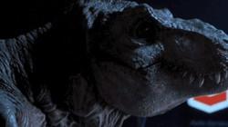 Phát hiện mới cho thấy khủng long bạo chúa... không to và hung dữ như trong phim
