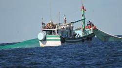 Tàu giã cào phá vùng bảo tồn biển: Phạt 25 triệu, thu ngư lưới cụ