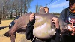 Mỹ: Cậu bé 13 tuổi câu được cá da trơn to khủng khiếp, phá kỷ lục bang
