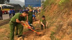 Sơn La: Trồng cây hưởng ứng chiến dịch giờ trái đất 2019